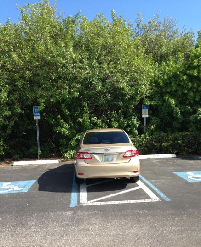 Creative parking